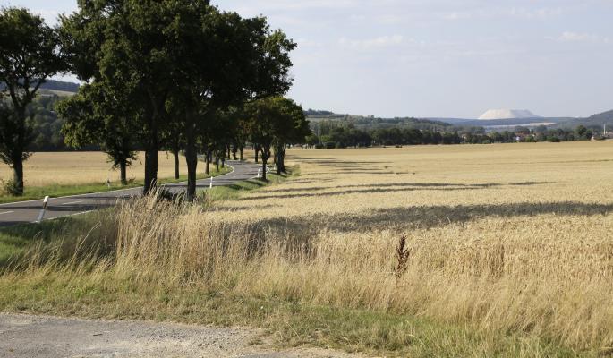 Госдума одобрила изъятие неиспользуемых сельхозземель