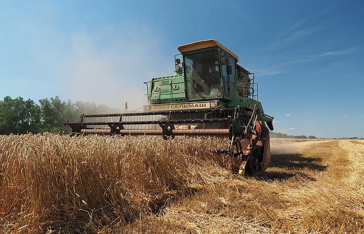Кабмин утвердил перечень сельскохозяйственной продукции для оказания господдержки