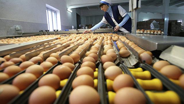 Продовольственные карточки появятся в России уже в 2017 году