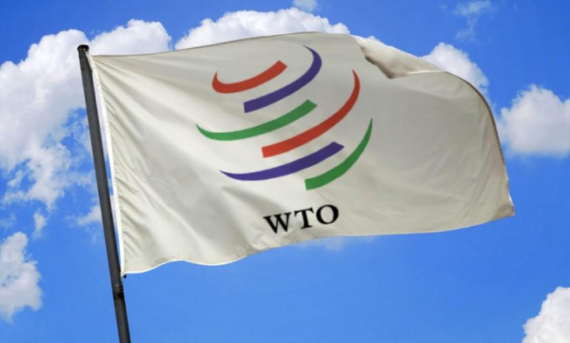 ВТО обязала Россию отказаться от антидемпинговых пошлин на автомобили из ЕС