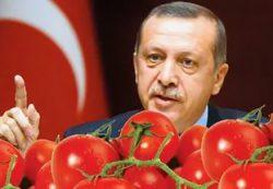 Россия ударила Эрдогана по помидорам