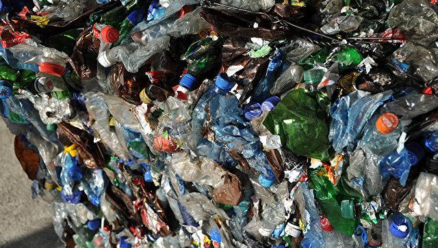 В Приморье намерены сотрудничать с Японией в области утилизации отходов