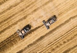 Россия увеличила экспорт пшеницы на 9%