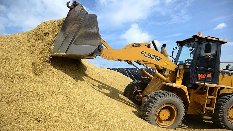 Минсельхоз прогнозирует сбор в пределах 100 млн тонн зерна в 2017 году