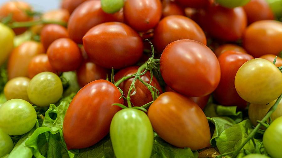Минсельхоз РФ: экспорт овощей в первом полугодии увеличился в разы