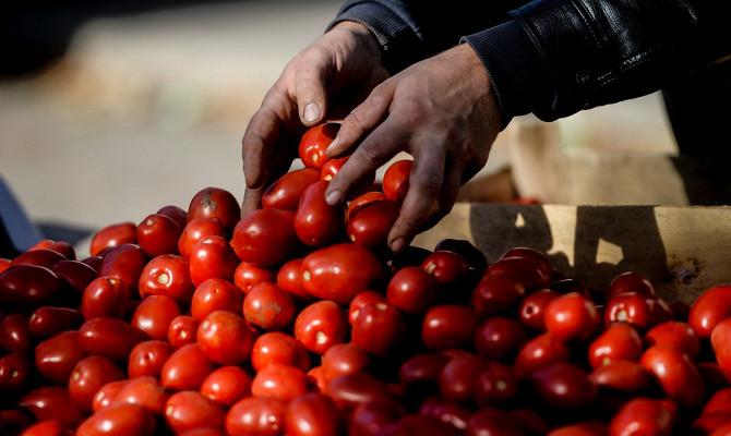 Названы сроки возвращения турецких томатов