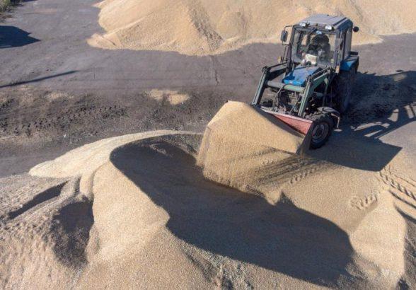 В правительстве оценили объемы экспорта зерна из России