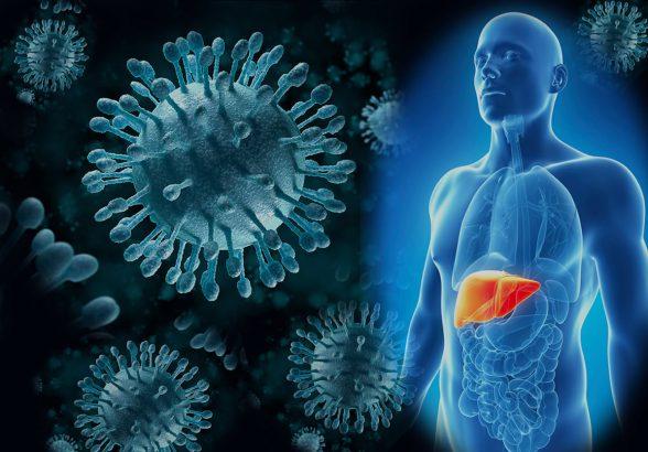 «Золотой стандарт» медикаментозного альянса Hepcinat/Natdac  в борьбе с ВГС