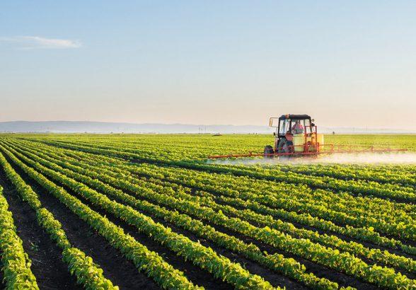 Минсельхоз разъяснил порядок продажи в России органической продукции