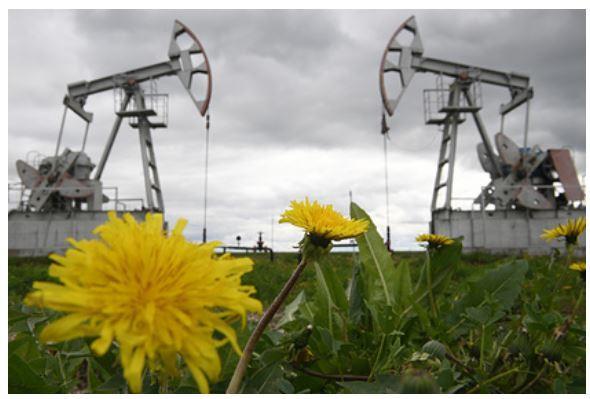 США с начала года значительно нарастили поставки нефти в Китай