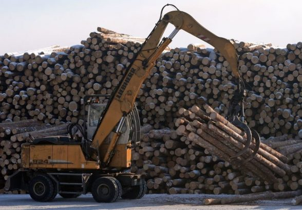Лесной надзор перейдет на федеральный уровень
