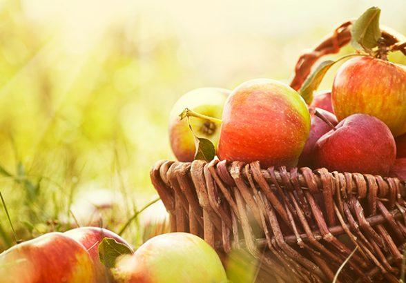 Совкомбанк предлагает вклад «Щедрая осень с Халвой» с повышенной ставкой