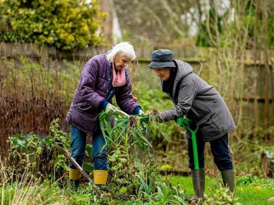 Правительство проработает индексацию пенсий для работающих пенсионеров