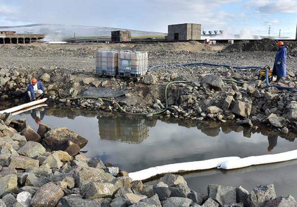 Новый резидент ТОР на Чукотке будет выпускать около 245 т рыбной продукции в год